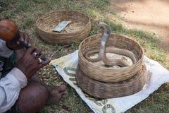 Serpiente que es encantada en la India imagen de archivo