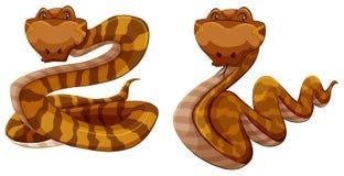 serpientes ilustración del vector