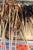 Serpientes fritas para la venta imagen de archivo