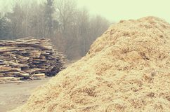 Serração Waste sob a forma de uma pilha de placas e de uma montanha da serragem Imagens de Stock Royalty Free