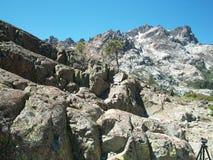 Serra alta rochas alpinas dos pinhos do lago Foto de Stock