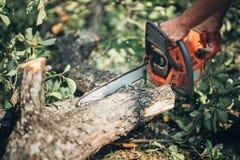 Serra de cadeia na madeira do fogo do corte da ação madeira do corte com serra de cadeia profissional Imagens de Stock