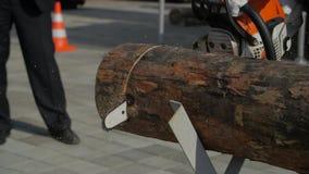 Serra de cadeia para cortar a lenha Log profissional do corte da lâmina da serra de cadeia do close-up da madeira filme