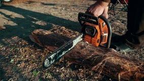 Serra de cadeia que vê a madeira seca que encontra-se na terra Madeira do corte do homem com serra de cadeia filme