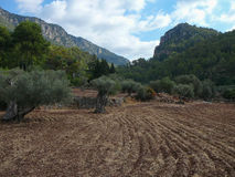 Serra de Tramuntana mountain in Soller. Serra de Tramuntana mountains in Soller, Spain Royalty Free Stock Image