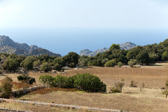 Serra de Tramuntana Royalty Free Stock Images