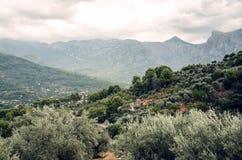 Serra de Tramuntana mountains near the Port de Soller town in Majorca, Spain, Europe Stock Photo