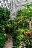 Serra 10 del giardino botanico della Cina Shanghai immagine stock