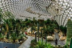 Serra 19 del giardino botanico della Cina Shanghai immagini stock