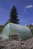 Serra del giardino con la struttura del metallo Fotografie Stock Libere da Diritti