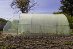 Serra del giardino con la struttura del metallo Fotografie Stock