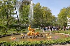 Serra della fontana Fotografia Stock Libera da Diritti