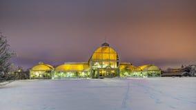 Serra della palma al parco della società del giardino a Gothenburg Fotografia Stock Libera da Diritti