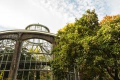 Serra di Plantage a Amsterdam, tempo di autunno Immagini Stock Libere da Diritti