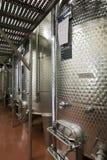 Serra di viti moderna in Italia Fotografia Stock Libera da Diritti