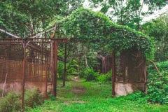Serra invasa e rovinata Fotografie Stock Libere da Diritti