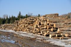 Serra madeira Imagem de Stock