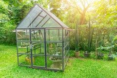 Serra nel giardino domestico fotografia stock libera da diritti