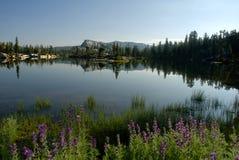 Serra reflexão do lago foto de stock royalty free