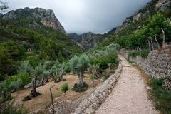 Serra Trumantana, Mallorca Royalty-vrije Stock Afbeelding