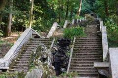 台阶在Serra庭院执行Bussaco,葡萄牙。 库存照片