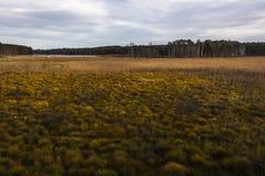 Serrahn bevarat landskap royaltyfria foton