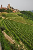 Serralunga Alba, Langhe, South Piemonte, Italy Royalty Free Stock Images