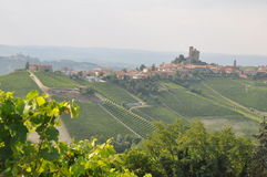 Serralunga barolo alba vineyards italy Stock Image