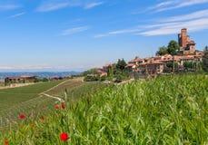 Serralunga dAlba and green surroundings. Stock Photos