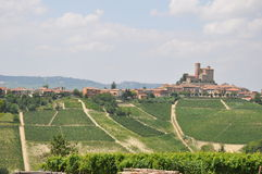 Serralunga Di Alba wijngaard Alba Italië Royalty-vrije Stock Foto's