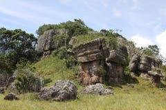 Serranía-de-la-Lindos, Colômbia Foto de Stock