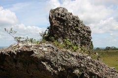 Serrania-de-la-Lindos colombia Fotografering för Bildbyråer