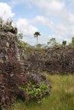 Serrania-de-la-Lindos colombia Arkivfoton