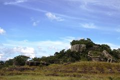 Serrania-de-la-Lindos colombia Royaltyfria Bilder