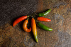 Serrano hot peppers Royalty Free Stock Photos