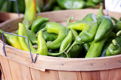 Serrano Peppers Royalty Free Stock Image