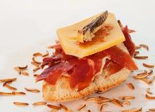 Serrano skinka på rostat bröd arkivfoto