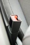 Serratura della cintura di sicurezza Fotografia Stock Libera da Diritti