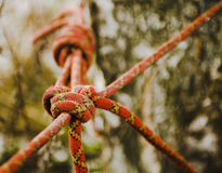 Serratura della corda. Fotografie Stock
