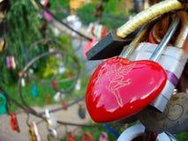 Serrature di amore e della fedeltà sugli alberi di nozze di felicità immagini stock libere da diritti