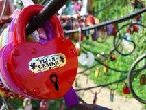 Serrature di amore e della fedeltà sugli alberi di nozze di felicità fotografia stock libera da diritti