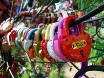Serrature di amore e della fedeltà sugli alberi di nozze di felicità immagine stock