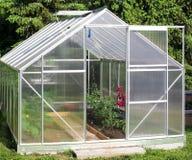 Serre chaude avec des plantes de tomate Photo libre de droits