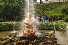 Serre chaude de fontaine photographie stock libre de droits