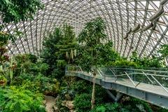 Serre chaude 7 de jardin botanique de la Chine Changhaï photos stock