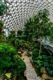 Serre chaude 9 de jardin botanique de la Chine Changhaï images stock