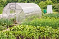 Serre chaude en plastique pour les légumes grandissants Images libres de droits