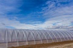 Serre chaude extérieure sur le ciel bleu Photographie stock