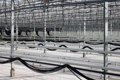 Serre chaude vide avec un système d'irrigation par égouttement images libres de droits