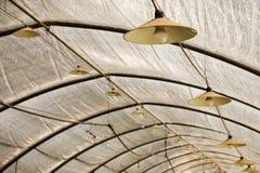 Serre met verlichtingslampen en gloeilampen boven de dakbundel voor het industriële kweken van aardbei De lamp hangt op stock afbeelding